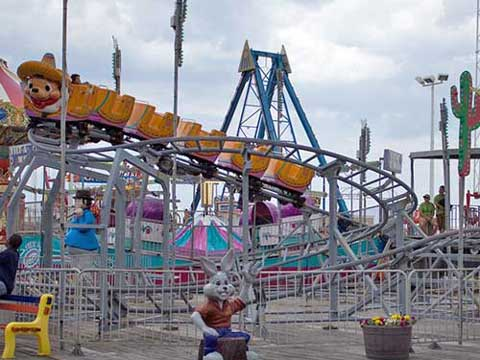 Disney park small roller coaster ride for amusement